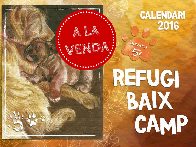 A La Venda 2016 Calendari Solidari