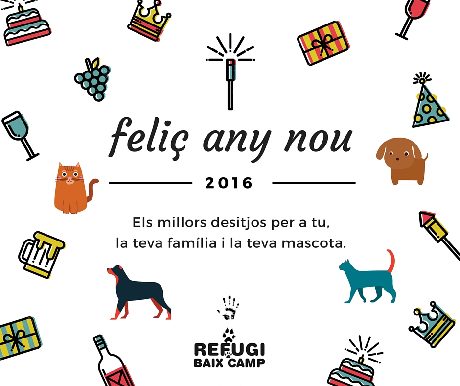 Feliç Any Nou!