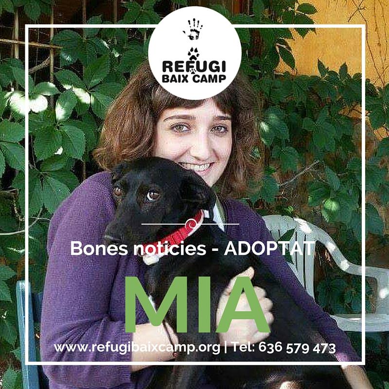 Adoptat Mia