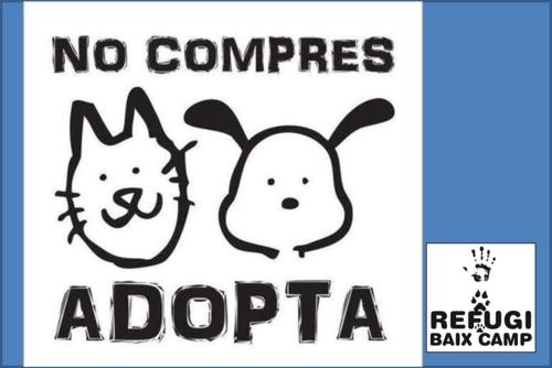 NO COMPRES, ADOPTA!!!