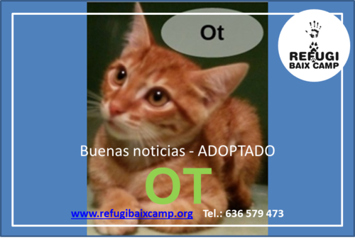 OT ADOPTADO