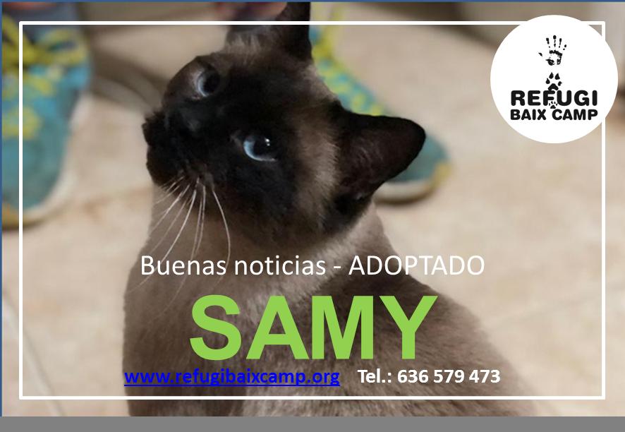 SAMY ADOPTADO