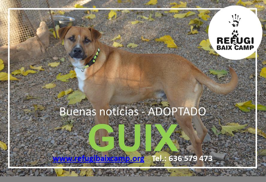 GUIX ADOPTADO