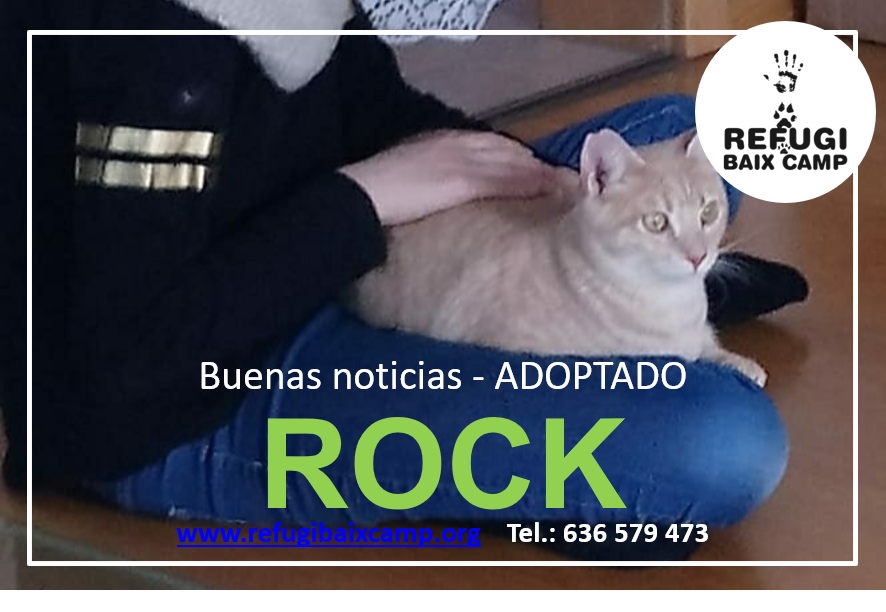 ROCK ADOPTADO